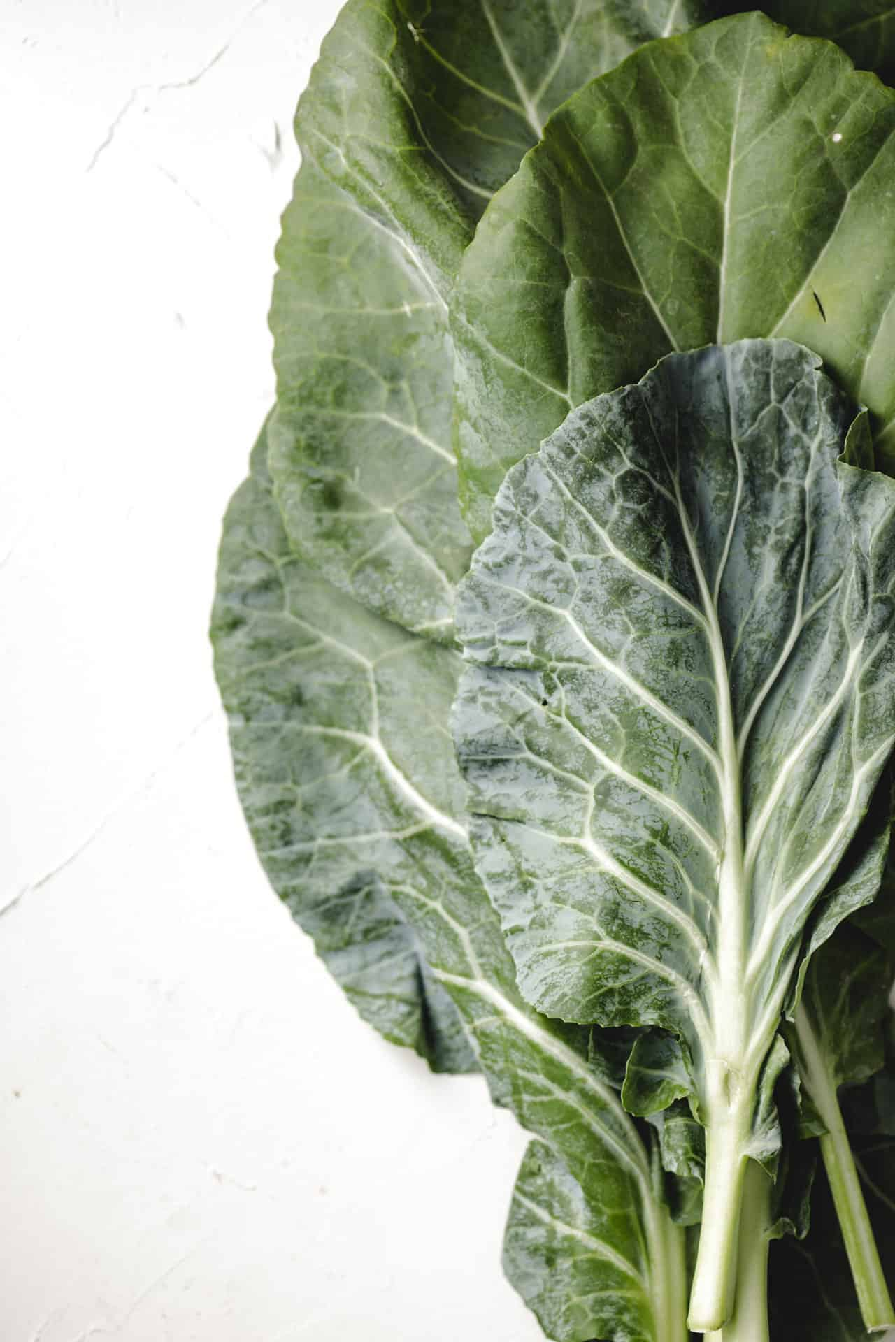 Large collard greens on a white background